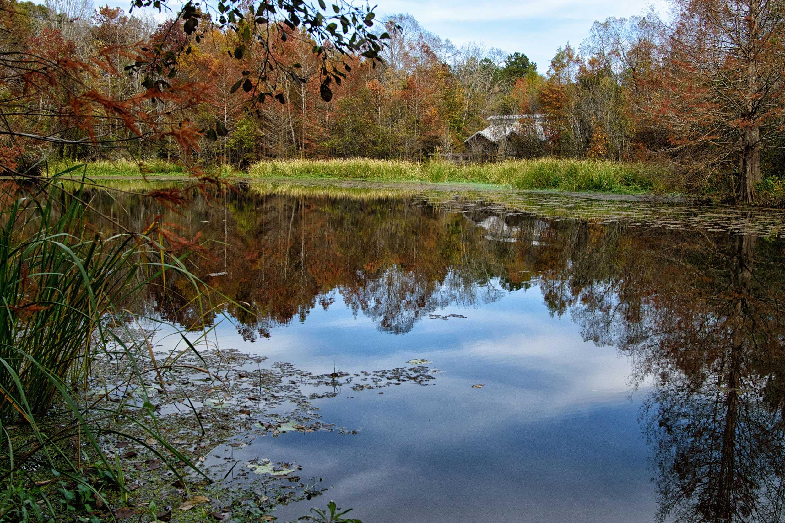 A park facility beside a beautiful pond at Boge Chitto State Park, Washington Parish, Louisiana.